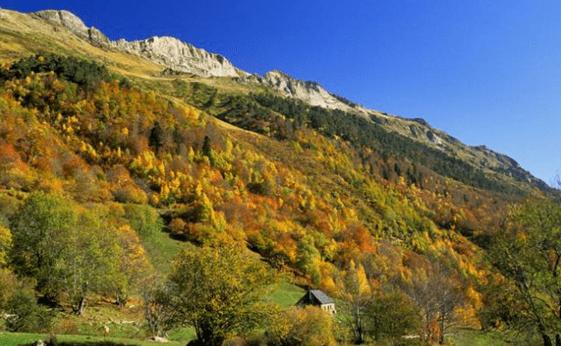 Colores Otoñales Valle de Aran