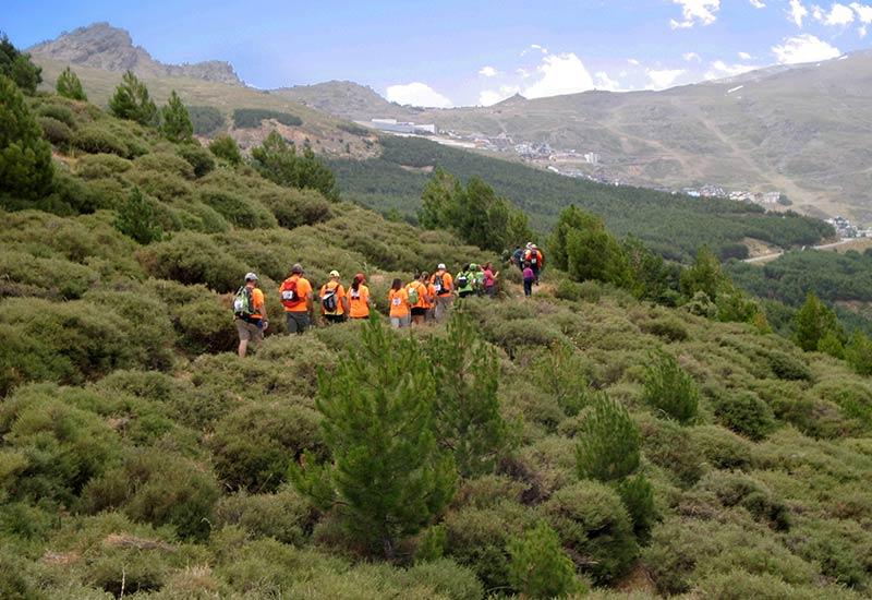 Sendero Las Suertes Sierra Nevada en verano